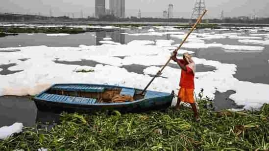 Yamuna pollution on top court radar again, read to know more