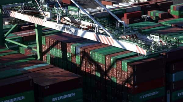 Stuck in Suez: Thousands of animals packed tight in ship hulls