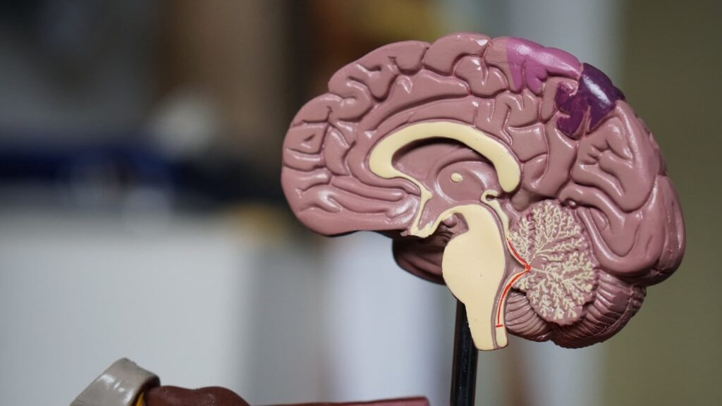 Study : Covid-19 linked with Alzheimer's disease-like cognitive impairment